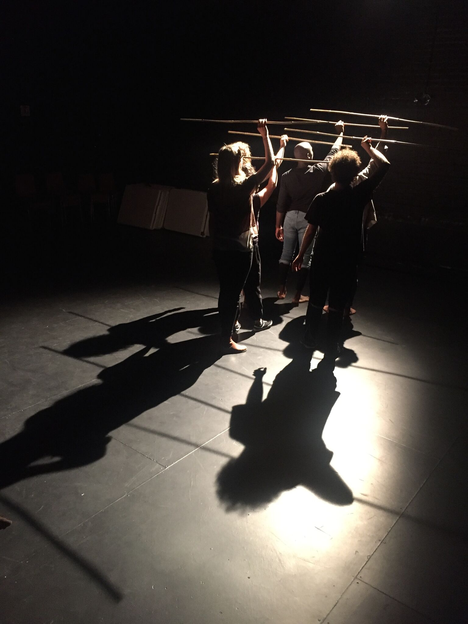 People holding sticks above head with shadows behind.